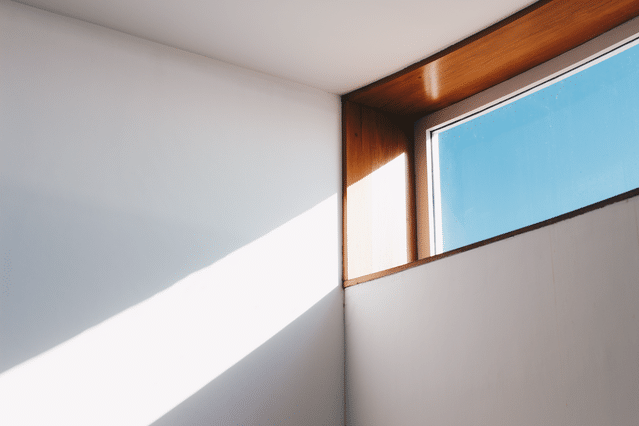 How To Get Rid Of Black Mold On Your Bathroom Ceiling